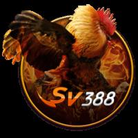 SV388-200x200