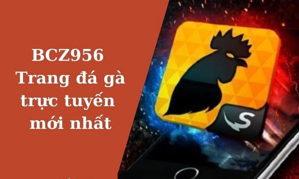 Lưu ý khi sử dụng link BCZ956